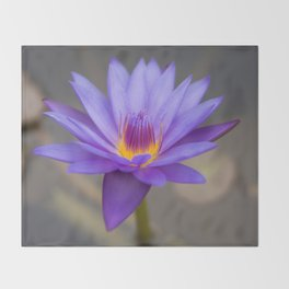 Purple Water Lily Throw Blanket