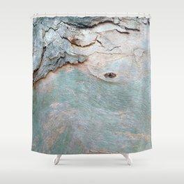 Eucalyptus tree bark texture 11 Shower Curtain