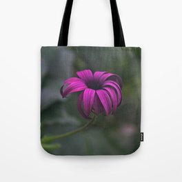 Has been a long day (African Daisy Flower) Tote Bag
