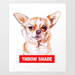 Throw Shade by BNVDO Art Print