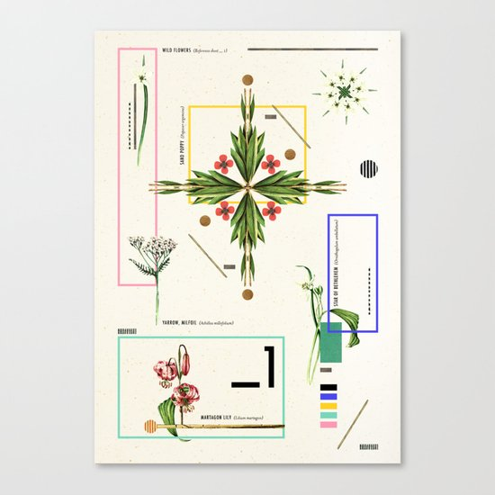 Wild Flowers_1 Canvas Print