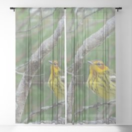 Beautiful bird Sheer Curtain