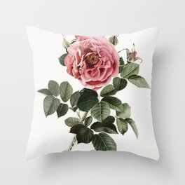 Dusty English Red Rose Throw Pillow