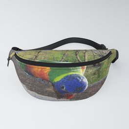 Who are you? Fanny Pack