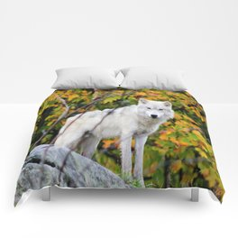 Spotted Comforters