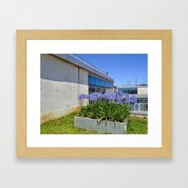 Colors of Ozyegin - Purple Framed Art Print