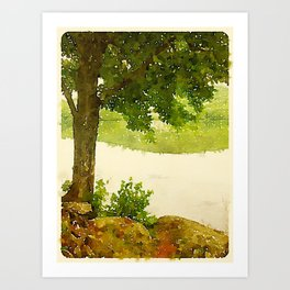 Camp Fairhaven, Maine Art Print