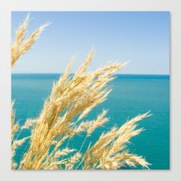 Toi Toi Horizon Canvas Print