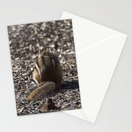 Petit suisse Stationery Cards
