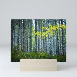 In the Woods Mini Art Print