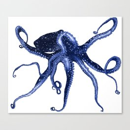 Cosmic Octopus II Canvas Print