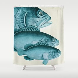 Fish Classic Designs 4 Shower Curtain
