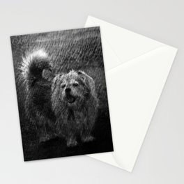 Dog in rain Stationery Cards