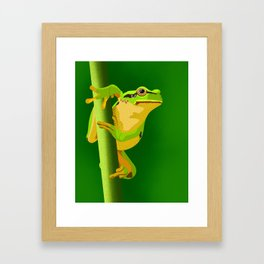 Bullfrog Framed Art Print