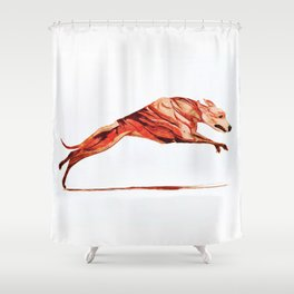 Whippet 2 Shower Curtain