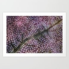 Organic Space and Structure Art Print