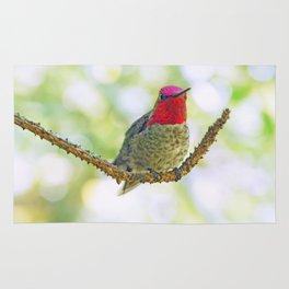 Anna's Hummingbird on a Twig Rug