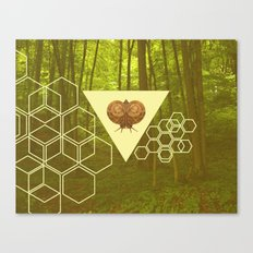 Geometric Snail Canvas Print