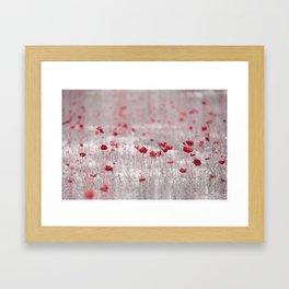 Poppies in Roma Framed Art Print