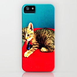 Kitters iPhone Case