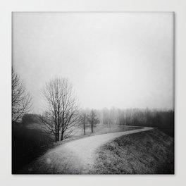 Landscape stories_Path Canvas Print