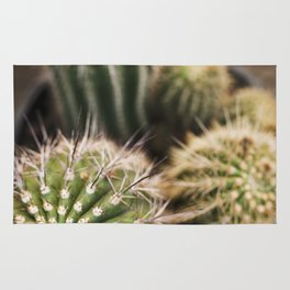 Cactus in Green & Gold Rug