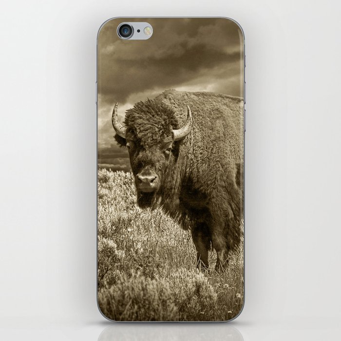 American Buffalo in Sepia Tone iPhone Skin