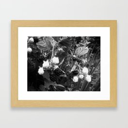 Duality at Work--Black and White Photography Prints Framed Art Print