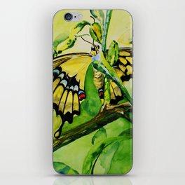 Lime Tree Butterfly II iPhone Skin