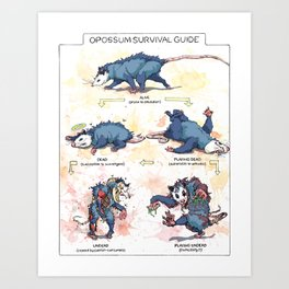 Opossum Survival Guide Art Print