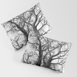 Boab Family in black and white Pillow Sham