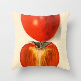 Vintage Plum Tomato Illustration Throw Pillow