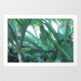 jungle.rules Art Print
