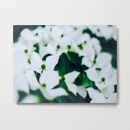 Bouquet Of White Flowers With Blurry Edit Metal Print