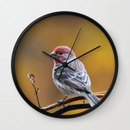Fall Finch Wall Clock