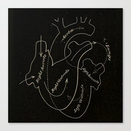 Black heart Canvas Print