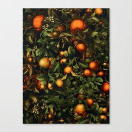 Vintage Fruit Pattern XX Canvas Print