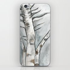 Birch Trees in Winter iPhone & iPod Skin