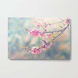 Renewal. Spring blossoms. Metal Print
