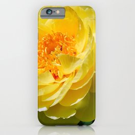 Pale Yellow iPhone Case