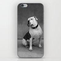 allyson johnson iPhone & iPod Skins featuring Johnson by Nicole Mlakar