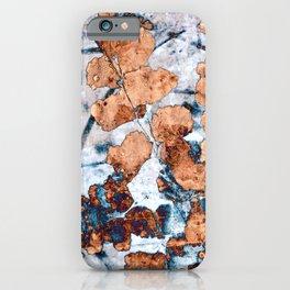 Maidenhair fern II iPhone Case