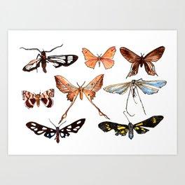 Set of butterflies watercolor Art Print