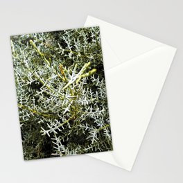 Fir tree Stationery Cards