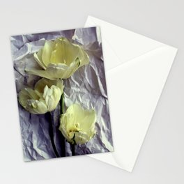 Paper Whites...Tulips, That Is Stationery Cards