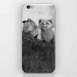 Fox Kits Sketch iPhone Skin