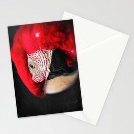 scarlet macaw - ara macao Stationery Cards