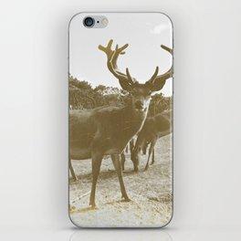 Deer Family iPhone Skin
