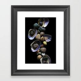 Shells and Stones May... Framed Art Print