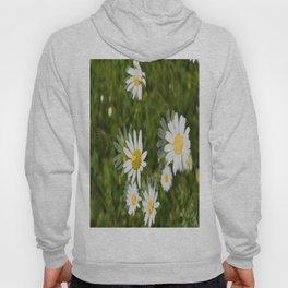 Daisies in a Blur Hoody